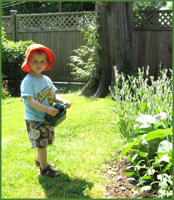 William (Charlotte's grandson) waters Nana's flowers