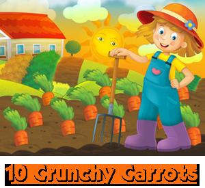 10 Crunchy Carrots [Image © honeyflavour - Fotolia.com]